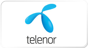 Partnere_Telenor